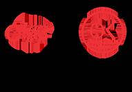 koroush-icon-png